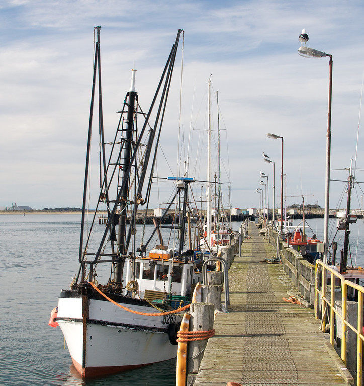 Bluff harbour