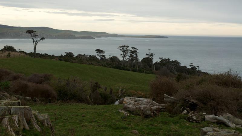 Catlins landscape