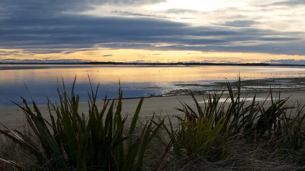 Looking towards Toetoes Bay, Fortrose nr Invercargill