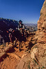 A pack train ascends Bright Angel trail from Phantom Ranch in the Grand Canyon.<br /> Photo © Carl Clark