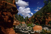 Oak Creek River winds through a gorge near Sedona.<br />  Photo © Cindy Clark
