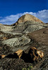 Bright petrified wood below the hills of the Painted Desert.<br /> Photo © Carl Clark