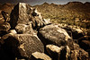 The rock art found within Saguaro National Park was created by the prehistoric Hohokam people.<br />  Photo © Cindy Clark