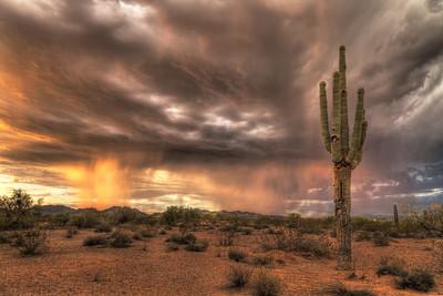 Desert Monsoon, Arizona