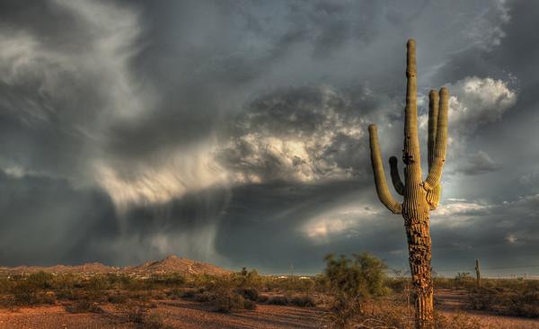 Summer Storms, Desert Arizona