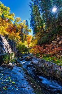 144 - Vibrant Colors, Nebo Creek, Maple Canyon, Utah