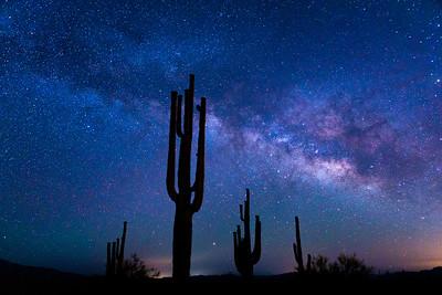 Arizona Desert Saguaro Astrophotography