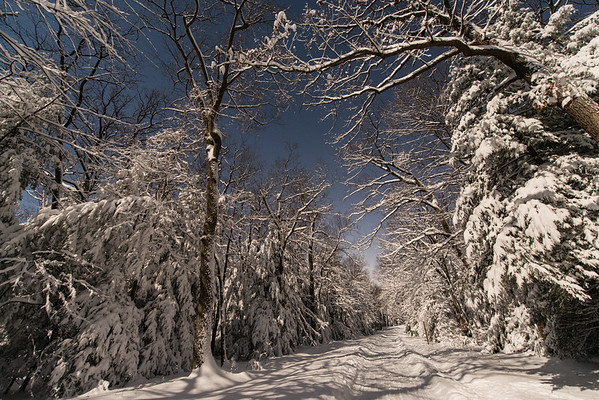 Coopers Rock_Winter_cross country skiing_Moonlight_West Virginia_photo by Gabe DeWitt_March 05, 2015-17