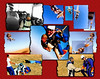 "20 year-old snapshots, about a half-dozen of them, served as the foundation for this collage.  Original photos were scanned, edited and otherwise polished up and then assembled using ""Collage Maker 3.60.""  With so few pics to work on and wanting to give the sense what an intense experience skydiving is proved a bit of a challenge. Sometimes a mirror effect was applied or a pic was spun a quarter or half turn.  In the end everyone was happy with the finished project."