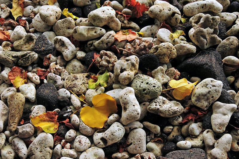 Shoreline rocks and debris, Hawaii (Big Island)<br /> <br /> 12x18 Plexiplaq in stock