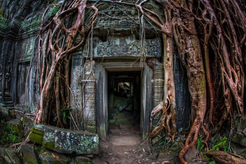 Ta Prohm Portal