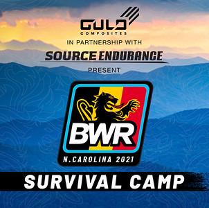 bwr gulo logo