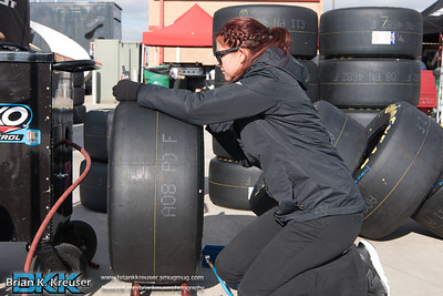 AMS Active Pest Contol Qualifying Day 2016