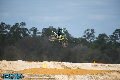Florida Tracks and Trails 02212016