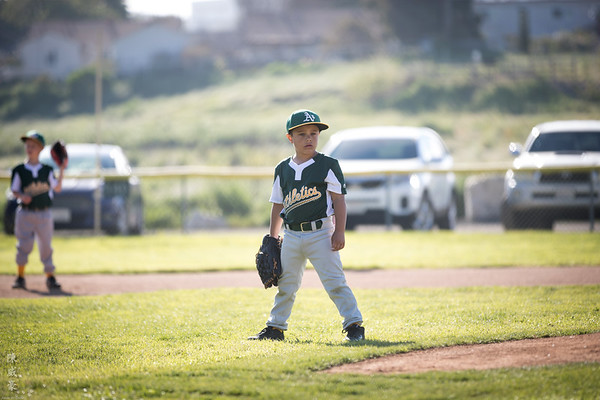 2017 West Torrance Little League - Alexander