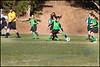 Green Hornets-11