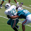 Ronnie Brown, running back, Miami Dolphins Training Camp, Davie, Florida August 2010