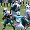 Ricky Williams, running back, Miami Dolphins Training Camp, Davie, Florida August 2010
