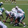 Miami Dolphins Training Camp, Davie, Florida August 2010