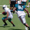Lex Hilliard, Running Back, Miami Dolphins Training Camp, Davie, Florida August 2010