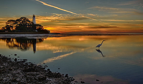 St. Marks lighthouse at dawn, again.