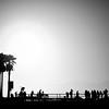 Venice Beach Skate Club #2
