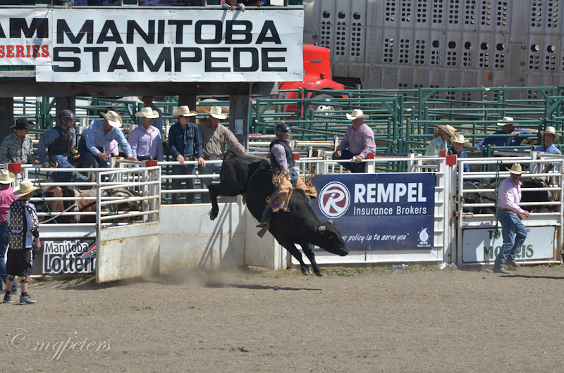 StampedeSmall-51