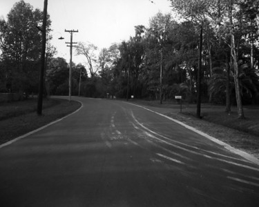 Ortega Boulevard on March 24, 1949.