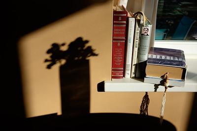 books+shadow_vase-5237