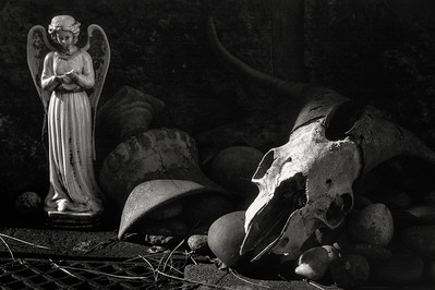 angel+ram_skull1_19-1-7