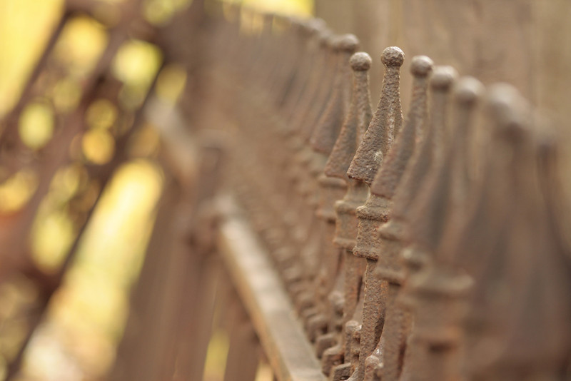 Old cemetery fence in the ACRES Preserve near Crooked Lake.