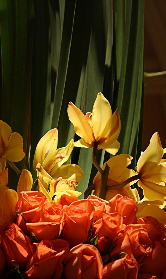 Bellagio Flowers