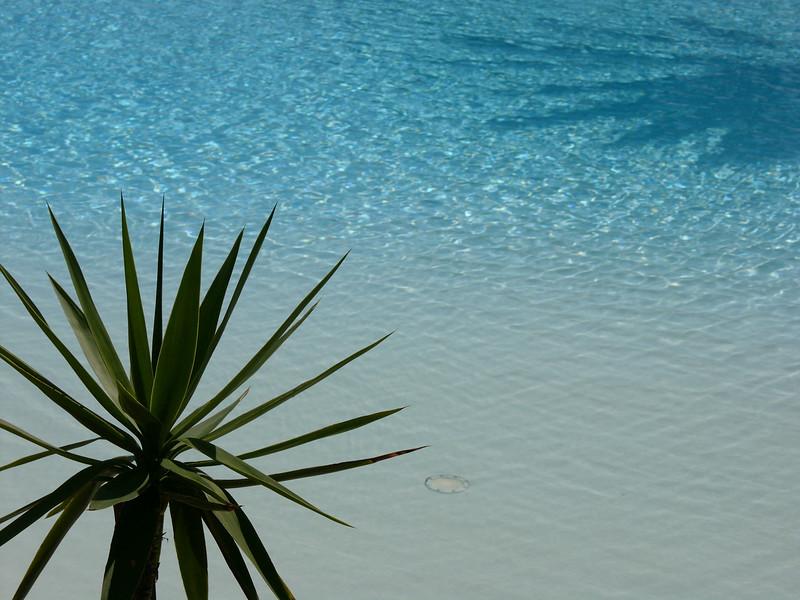 Winterurlaub auf Fuerteventura Februar 2006 Hotel Robinson Club Esquinzo Playa