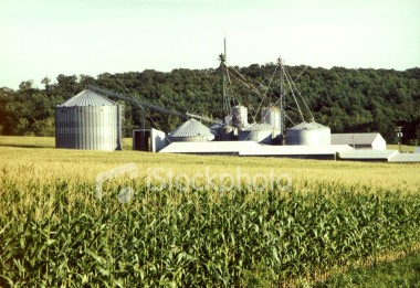 "<a href=""http://www.istockphoto.com/file_closeup/object/54487.php?id=54487&refnum=jwilkinson"" target=""istock"">farm silos and fields</a><br>a view of silos and farm buildings across corn fields. <br><br>Please drop me a note if/where you use it."