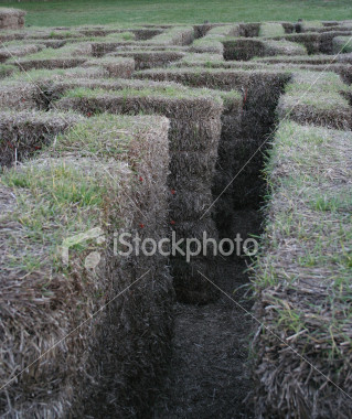 "<a href=""http://www.istockphoto.com/file_closeup/object/2407131.php?id=2407131&refnum=jwilkinson"" target=""istock"">Hay Maze</a><br>n fun Autumn event, a maze built from hay bales<br><br>Shot in evening lighting, so it is purposely a little greyer, but still good contrast and sharpness with little noise.<br><br>See also: <br><a href=http://www.istockphoto.com/file_closeup.php?id=2629411><img border=0 src='http://www.istockphoto.com/file_thumbview_approve.php?size=1&id=2629411'></a> <a href=http://www.istockphoto.com/file_closeup.php?id=2629432><img border=0 src='http://www.istockphoto.com/file_thumbview_approve.php?size=1&id=2629432'></a> <br>"