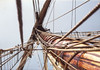 "<a href=""http://www.istockphoto.com/file_closeup/object/31801.php?id=31801&refnum=jwilkinson"" target=""istock"">Mast on tall ship 1</a><br>looking up the mast of the Pride of Baltimore II, a sailing tall ship. <br><br>See also: <br><a href=http://www.istockphoto.com/file_closeup.php?id=31803><img border=0 src='http://www.istockphoto.com/file_thumbview_approve.php?size=1&amp;id=31803'></a> <a href=http://www.istockphoto.com/file_closeup.php?id=1796376><img border=0 src='http://www.istockphoto.com/file_thumbview_approve.php?size=1&amp;id=1796376'></a> <a href=http://www.istockphoto.com/file_closeup.php?id=1796930><img border=0 src='http://www.istockphoto.com/file_thumbview_approve.php?size=1&amp;id=1796930'></a> <a href=http://www.istockphoto.com/file_closeup.php?id=1844977><img border=0 src='http://www.istockphoto.com/file_thumbview_approve.php?size=1&amp;id=1844977'></a> <a href=http://www.istockphoto.com/file_closeup.php?id=1930611><img border=0 src='http://www.istockphoto.com/file_thumbview_approve.php?size=1&amp;id=1930611'></a><br><br>Please drop me a note if/where you use it.  (no restrictions, I&#039;m just curious about how people are using it)"