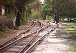 "<a href=""http://www.istockphoto.com/file_closeup/object/39206.php?id=39206&refnum=jwilkinson"" target=""istock"">Railroad tracks (2)</a><br>railroad tracks through the woods.  taken where the tracks split/combine. <br>"