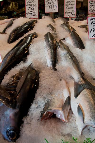 Fish on Ice-1, Pike Street Market, Seattle, WA