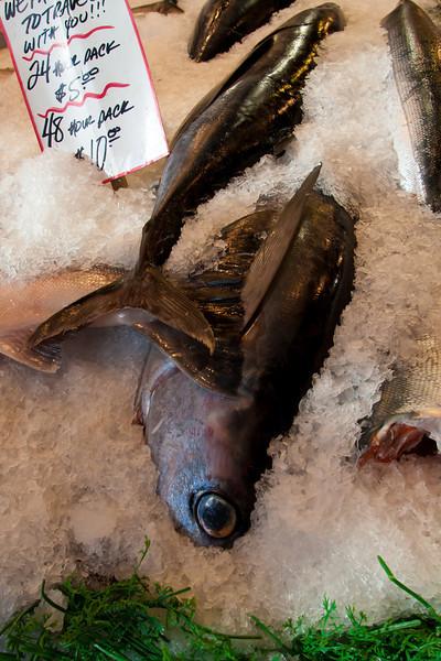 Fish on Ice-3, Pike Street Market, Seattle, WA