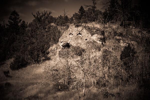 Mountain Lion Rock