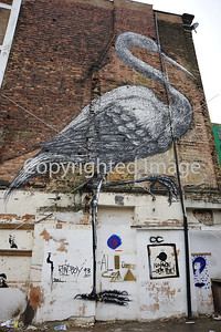 Bird on a wall by Roa