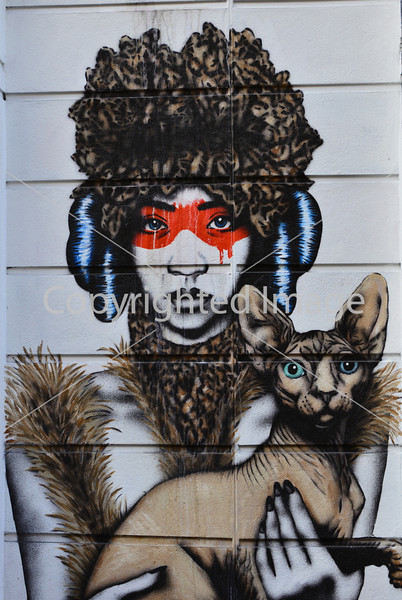 Siamese Cat with Girl in Red Mask