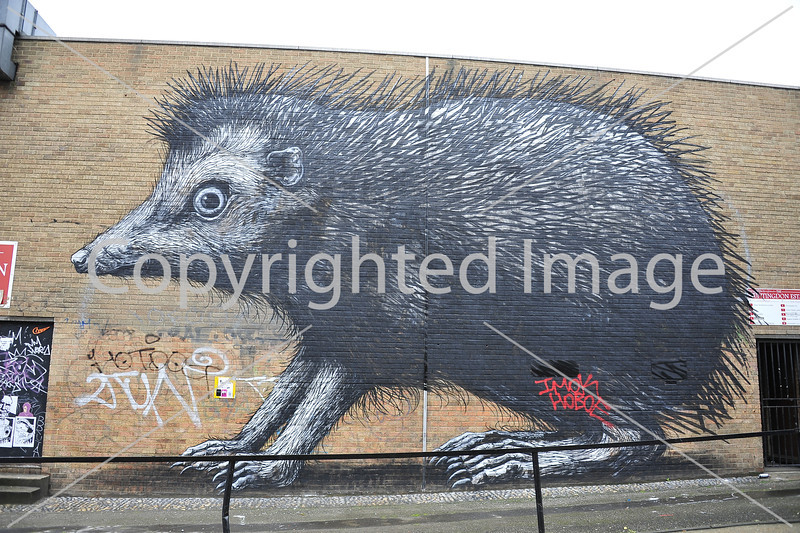 Giant Hedgehog by Roa