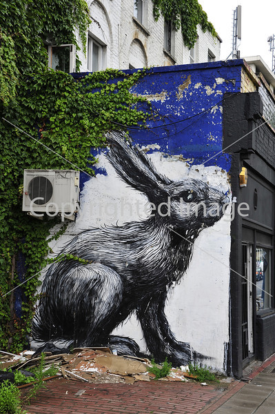 Rabbit by Roa