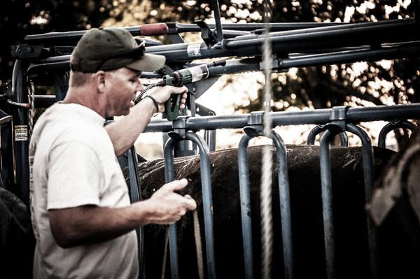 BP_2012-SO_Ranch-Cowboys-3395