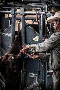BP_2012-SO_Ranch-Cowboys-3392