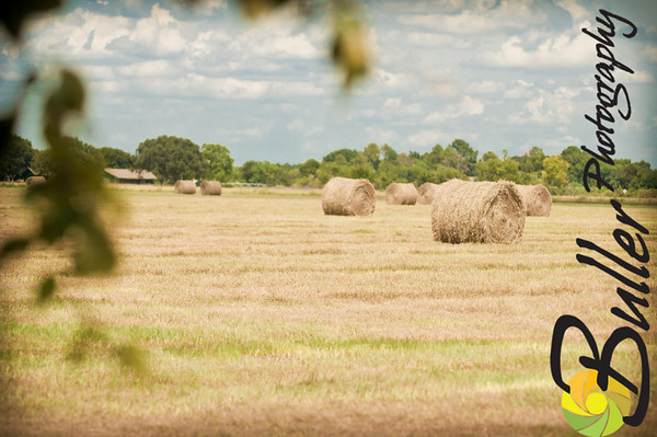 BullerPhotos_HayBaling-0726