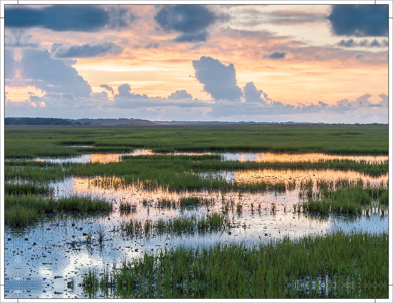 Botany Bay Marsh Sunrise