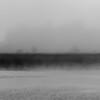 Beresford Creek Predawn Mist B&W