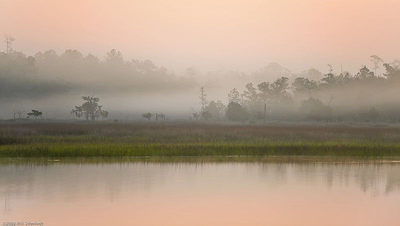 Beresford Creek Dawn Mist